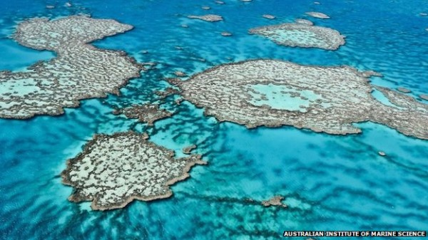 The Great Barrier reef off the east coast of Australia.