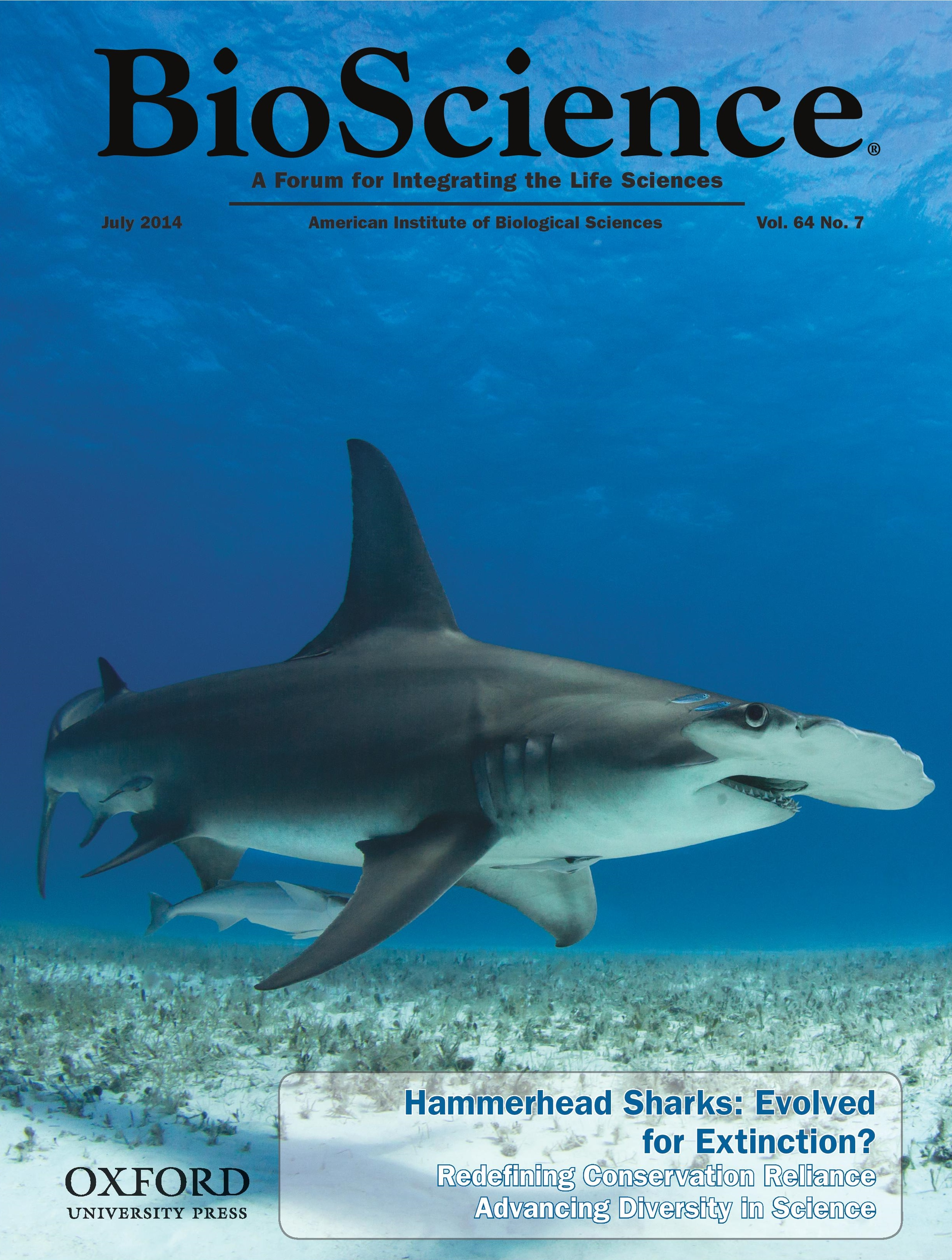 shark research papers The marine conservation science institute  including the largest white shark to  this book incorporates the most important contemporary research papers on white.