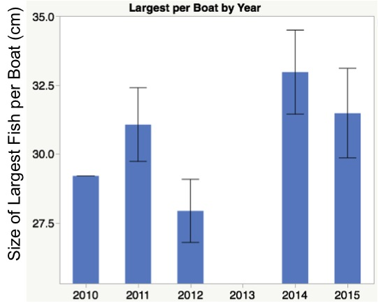 Figure 2. The size of the largest lion fish returned per boat from 2010 - 2014.