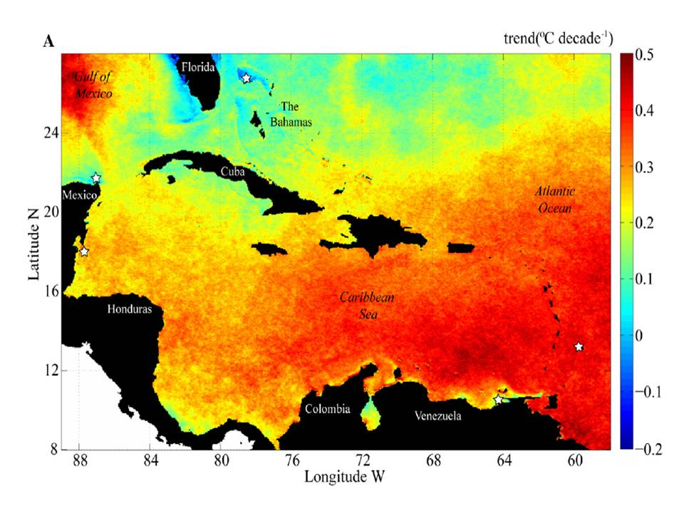 Feature Article Recent Sea Surface Temperature Trends In