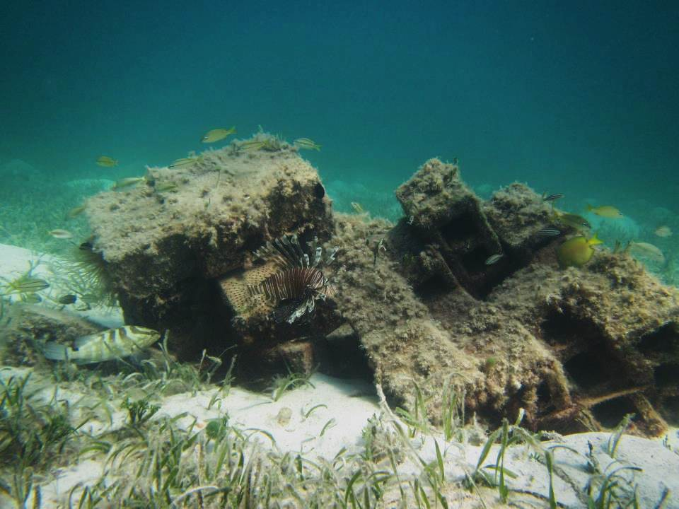 how to make cheap artificial reefs