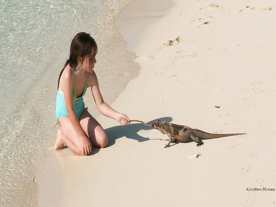 What is ecotourism in the Bahamas?