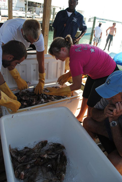 outreach_invasive_lionfish.jpg