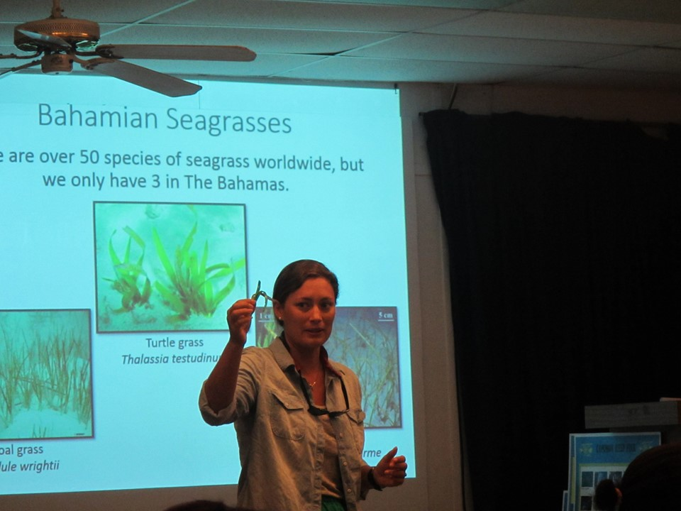Stephanie Kraft Archer talking about seagrass.