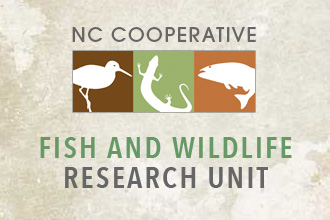 Ncsu department of applied ecology programs and centers for Nc fish and wildlife
